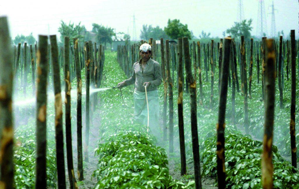pestici in agricoltura