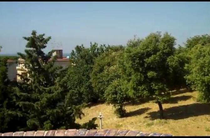 Parco del Montuno