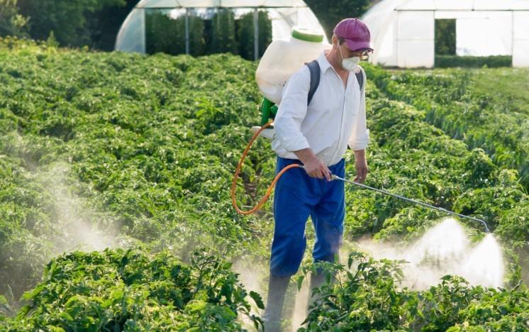 trattamento con pesticidi