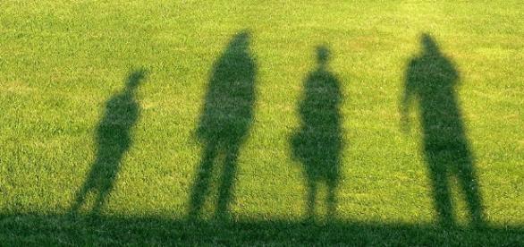 lifegate-indagine-sullo-stile-di-vita-sostenibile-tendenze-la-lamadiacom_1248017