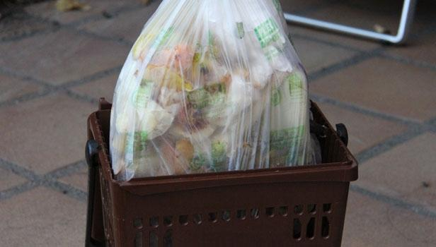 biodegradabile o no?