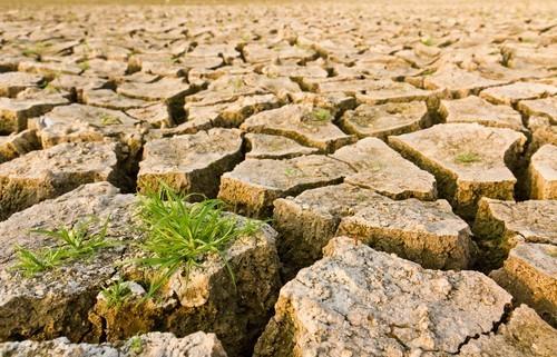 siccità, mancano 5 miliardi