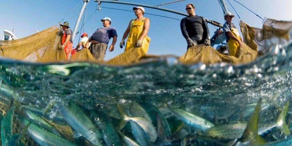 divieto Pesca Elettrica