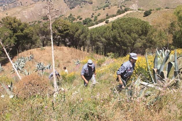 immagine di controlli delle forze dell'ordine anti bracconaggio