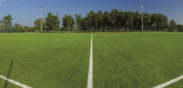 Un'immagine di un campo di calcio in erba sintetica riciclabile
