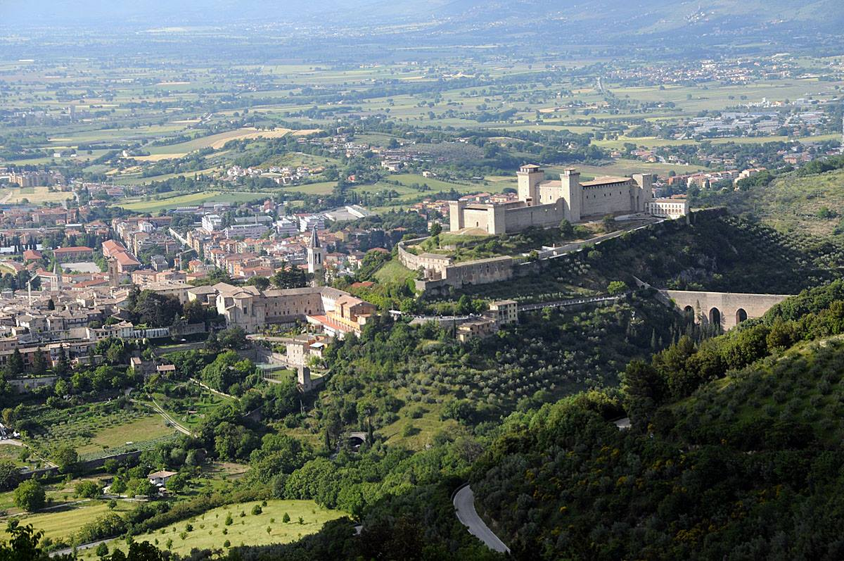 foto della Pedemontana Olivata tra Assisi e Spoleto