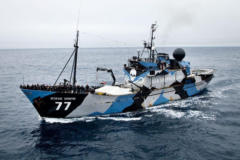 Sea Shepherd, la nave contro pesca illegale
