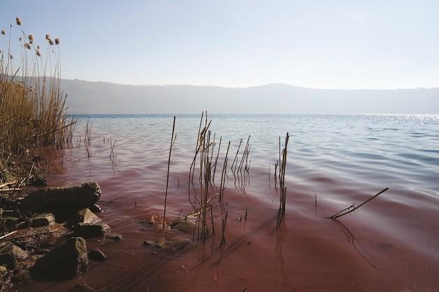 un'immagine dell'acqua rossa del lago di Albano