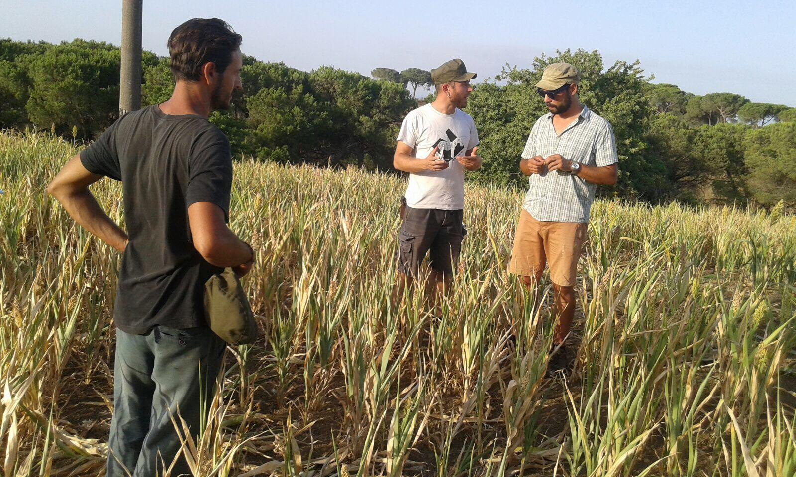 Agricoltura ecologica, al via il ciclo della Scuola Emilio Sereni