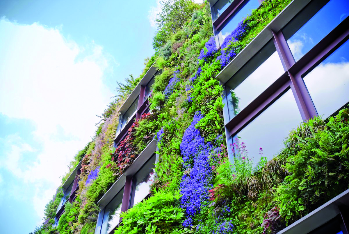 Green Roof Vertical Farming Copia