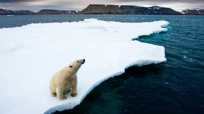 foto del mare Artico