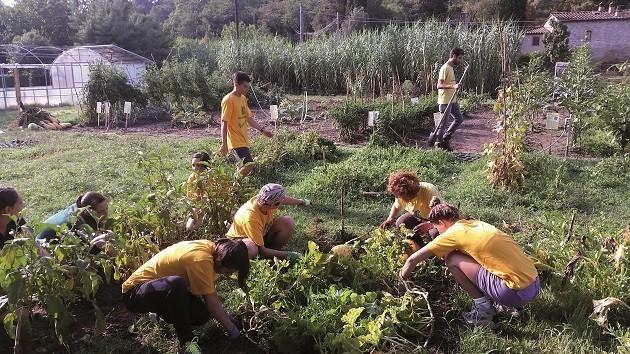 una foto di volontari di Legambiente al lavoro nei campi vicino Arezzo