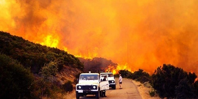 immagine di un incendio in Sardegna