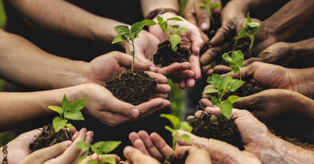 Agricoltura Sociale è motore di sviluppo