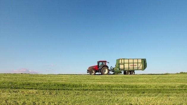immagine di un campo agricolo