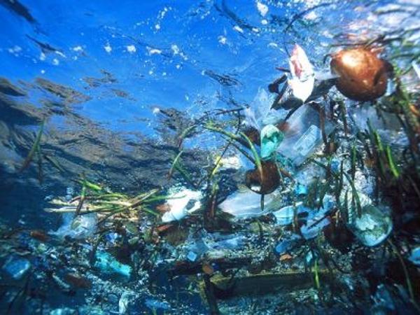 Platisfera, il progetto Pelagos Plastic Free
