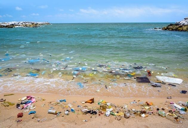 foto di spiaggia piena di rifiuti