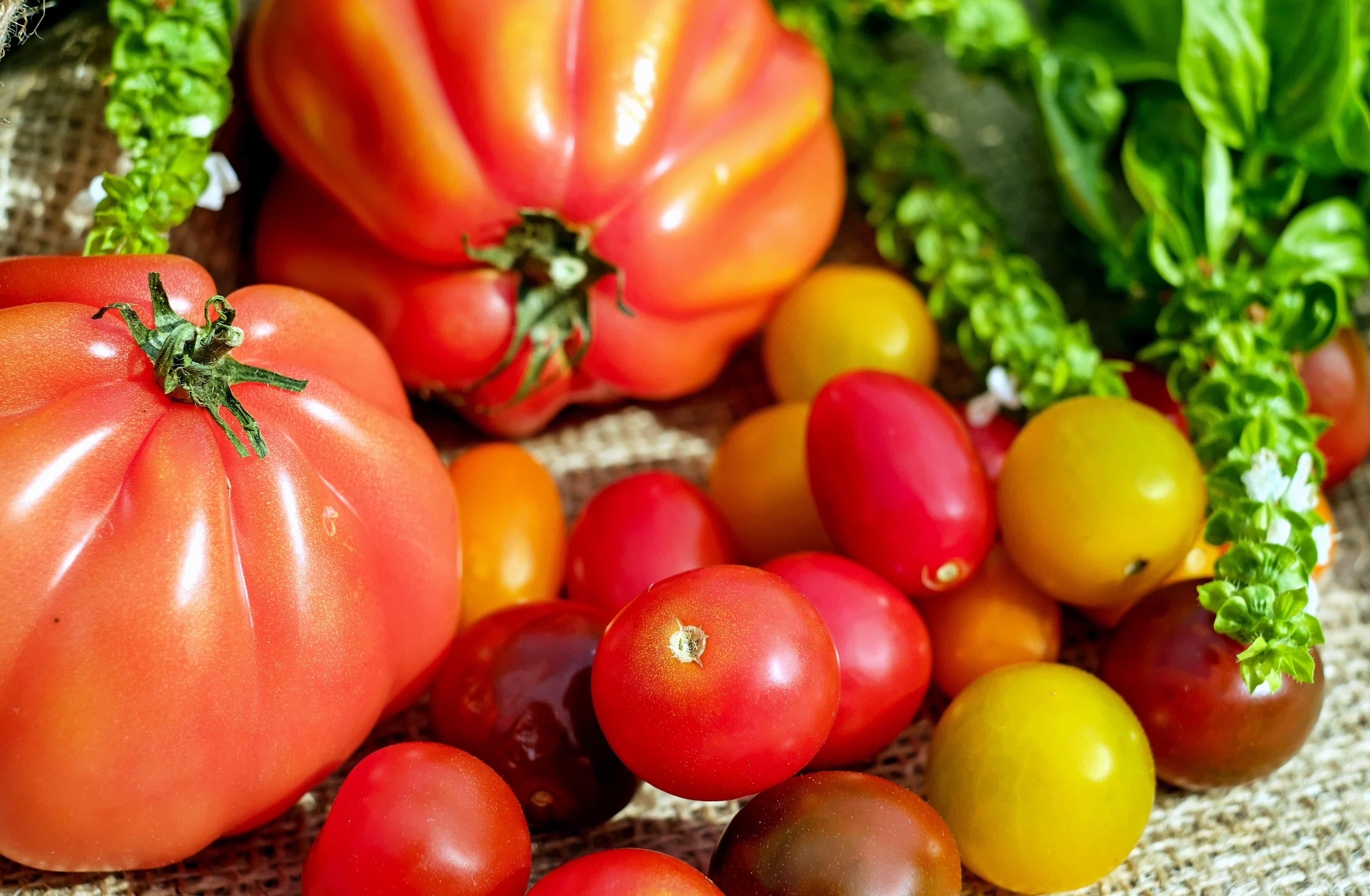 Frutta E Verdura Gas