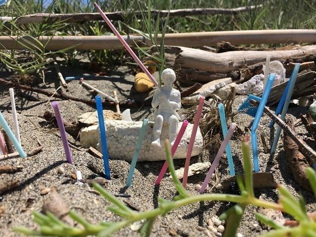 Rifiuti plastici A Coccia Di Morto, Fiumicino (rm) 15