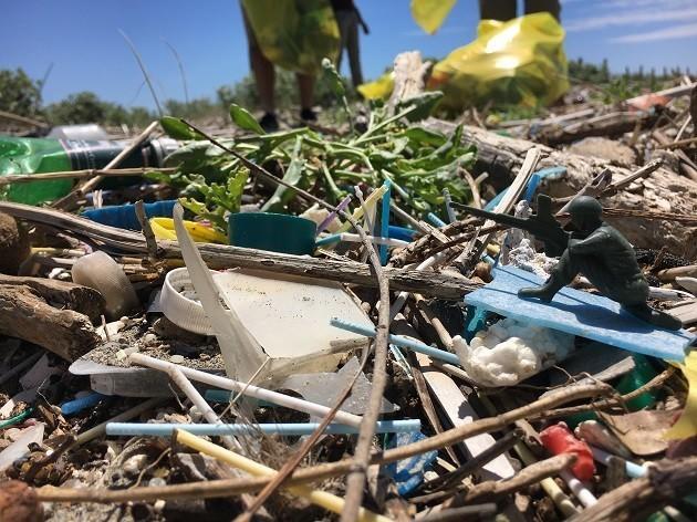 Rifiuti Plastici Raccolti A Coccia Di Morto, Fiumicino (rm) 3