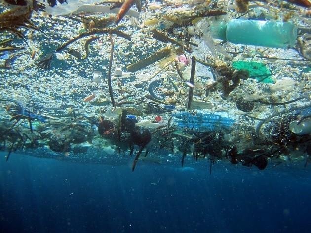 immagine di una reta da pesca in mare piena di rifiuti plastici