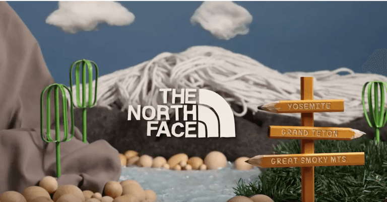North face plastica
