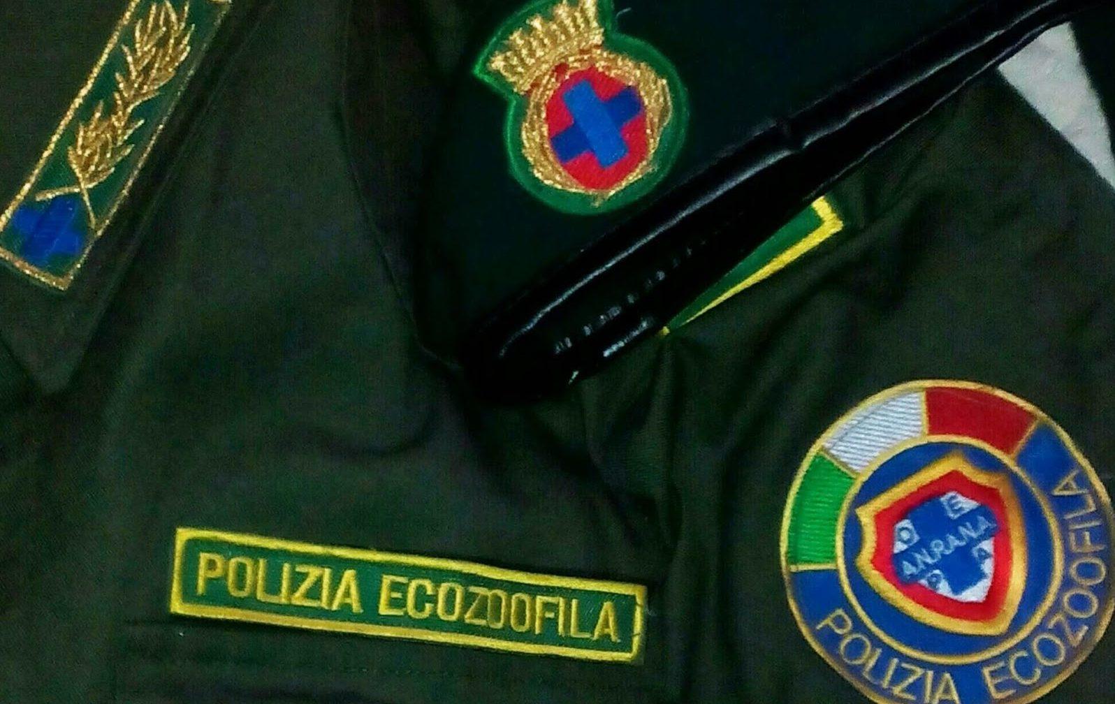 guardia zoofila
