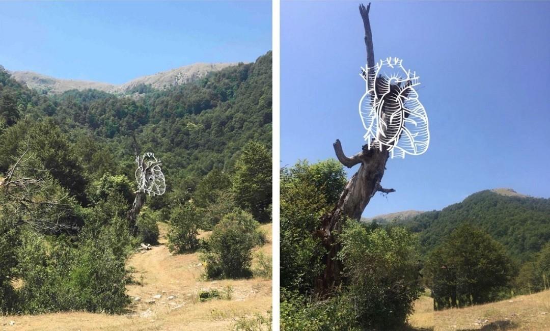 Arteparco al Parco Nazionale d'Abruzzo Lazio e Molise