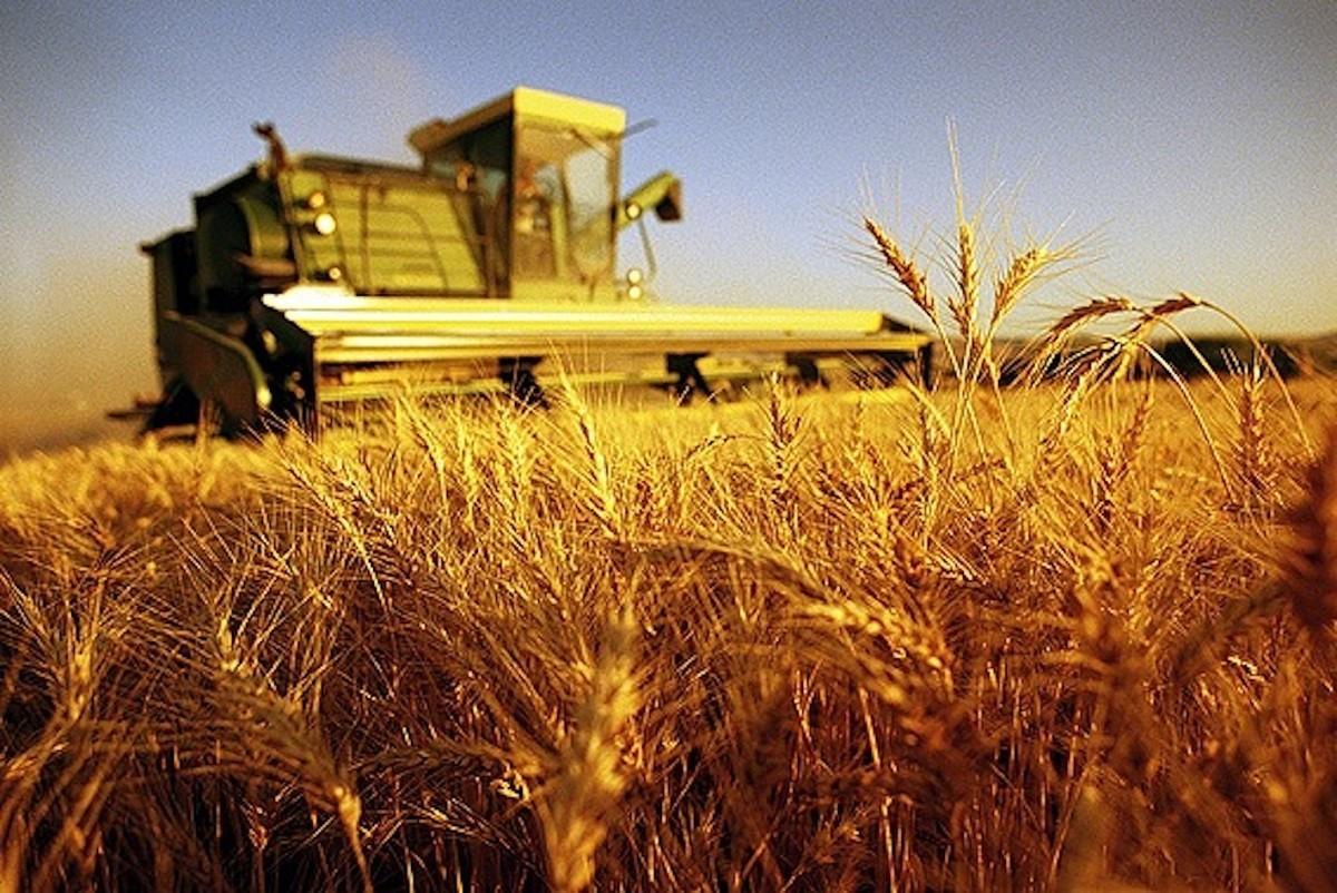 Agricoltura_Coldiretti_infortuni_lavoro
