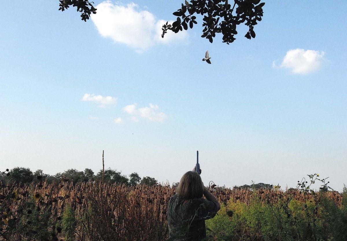 Preapertura stagione caccia, la denuncia di Lipu-BirdLife Italia