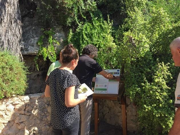 foto del percorso flora aliena invasiva a Cagliari