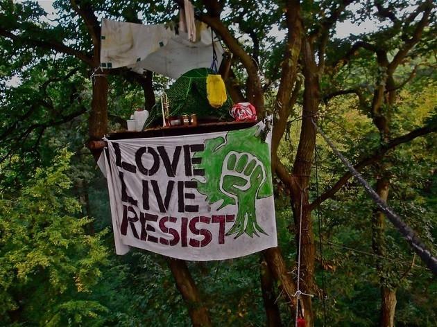 """uno striscione con scritto """"ama vivi resisti"""" su un albero nella foresta di Hambach"""