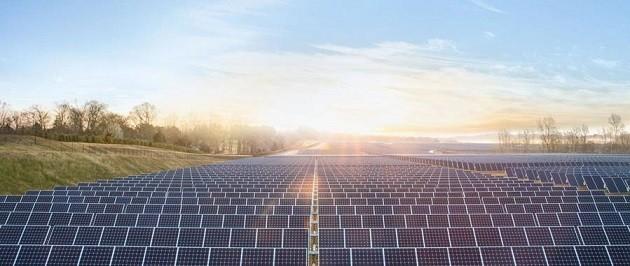 foto della distesa di pannelli solari a Cernobyl