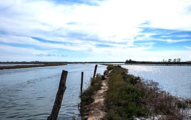Una fotografia di un'area della laguna nord di Venezia