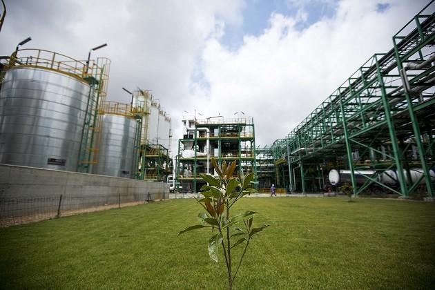 Una bioraffineria della Novamont