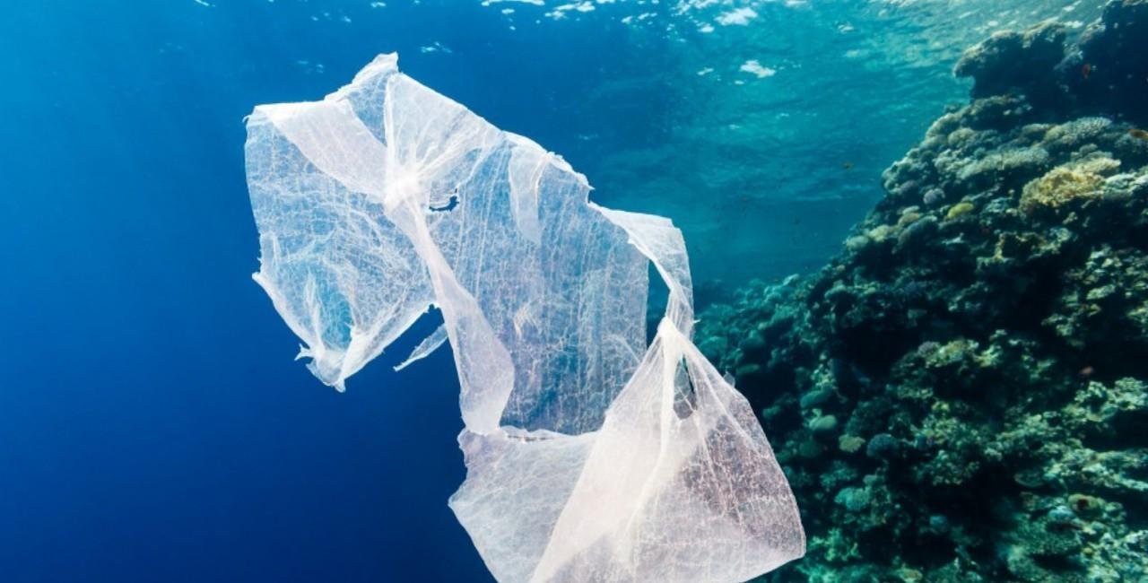 Un rifiuto in plastica in un fondale marino