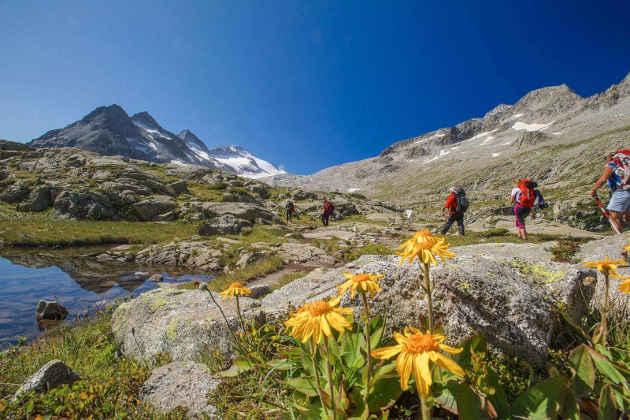 La fotografia di persone che fanno un'escursione sulle Alpi d'estate