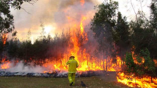 immagine di un in incendio in una foresta australiana