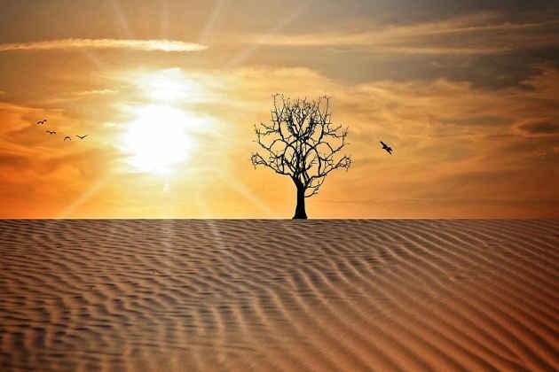 L'immagine di un'area desertica in Qatar