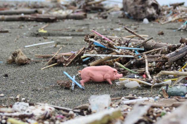 L'immagine di cotton fioc e altri rifiuti su una spiaggia