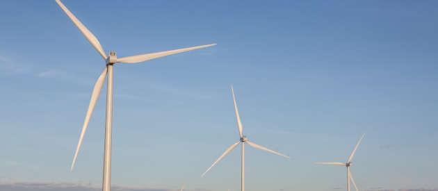 foto di un parco eolico
