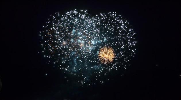 Fuochi D'artificio uccidono animali