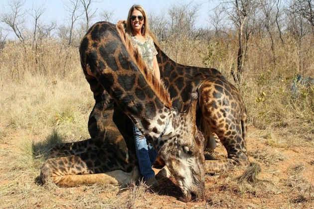 La fotografia della cacciatrice americana che ha ucciso una giraffa in Sudafrica