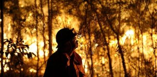 Australia incendi cambiamenti climatici