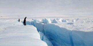 Groenlandia scioglimento ghiacciai