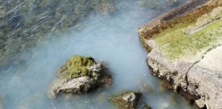 Punta Campanella inquinamento