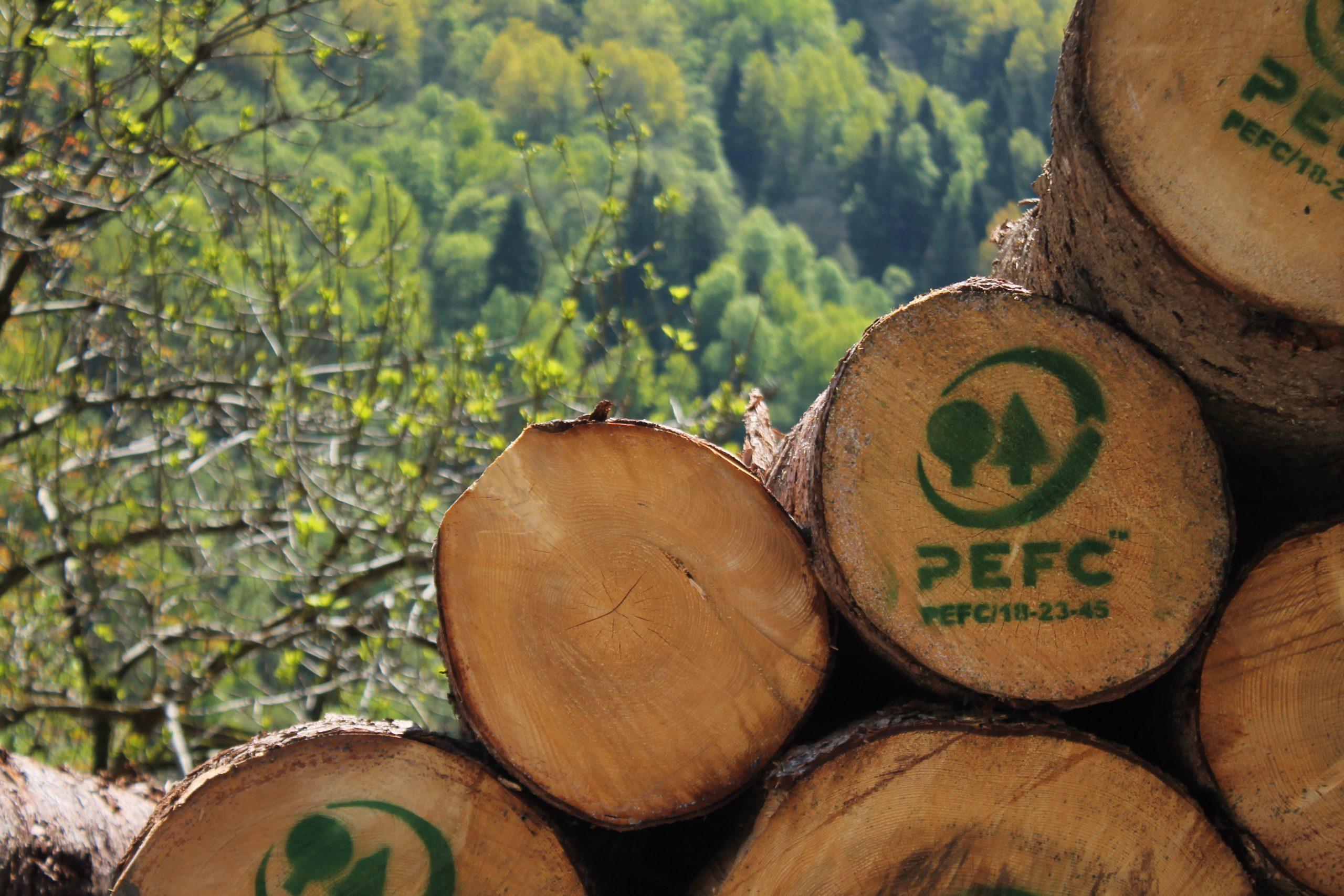 4 Scegliere Prodotti Certificati Con Pefc 