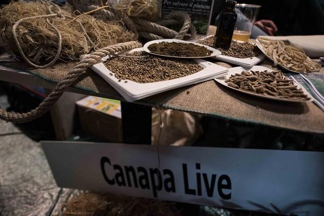 Un'immagine di uno stand della Fiera Canapa Mundi