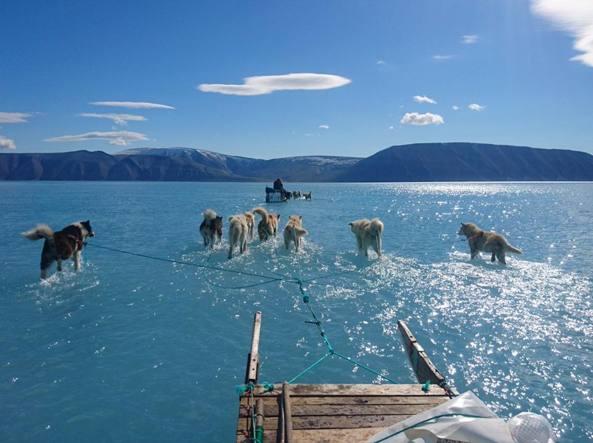 Groenlandia scioglimento ghiacci
