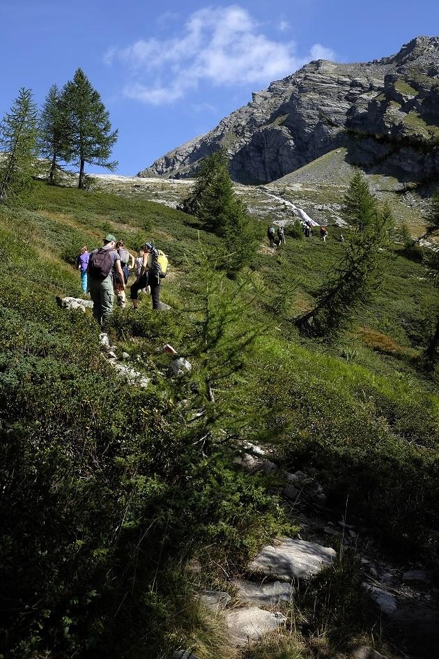 Trekking Alpi (Foto di Antonio Bergamino)
